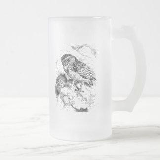 Vintage Burrowing Owl Chick Bird Illustration Frosted Glass Beer Mug