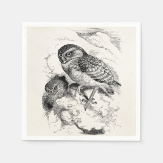 Vintage Burrowing Owl Chick Bird Illustration Paper Napkin