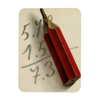 Vintage Business, Math Equation with Red Pencil Magnet