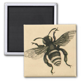 Vintage busy bee magnet