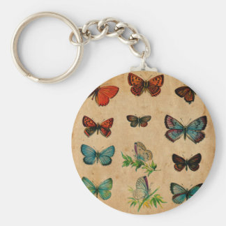 Vintage Butterfies and Moths (10).jpg Keychain