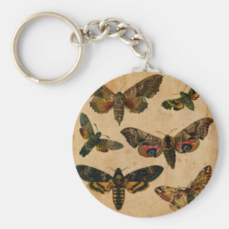 Vintage Butterfies and Moths (1).jpg Keychain