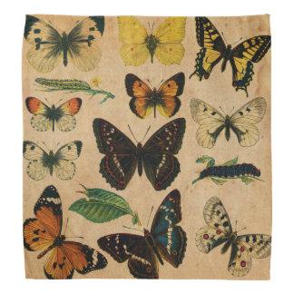 Vintage Butterfies and Moths (2).jpg Bandana