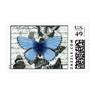 Vintage Butterflies Austen Stamps