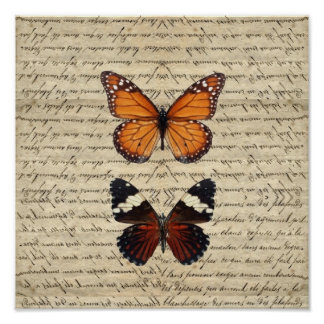 Vintage butterflies collection poster