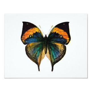 Vintage Butterfly - 1800's Antique Butterfly Litho 4.25x5.5 Paper Invitation Card