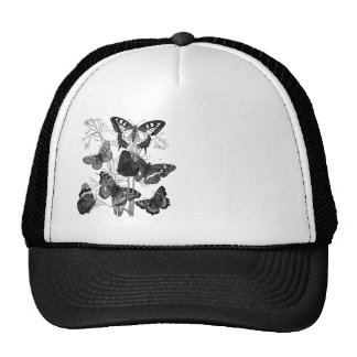 Vintage Butterfly Butterflies Print Hats