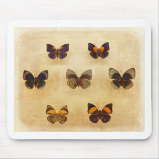 Vintage Butterfly Display Mouse Pad