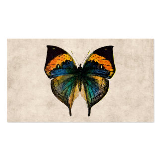 Vintage Butterfly Illustration 1800 s Butterflies Business Card