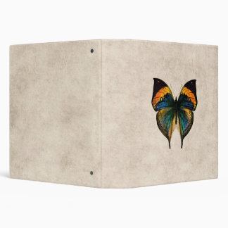 Vintage Butterfly Illustration 1800's Butterflies 3 Ring Binder