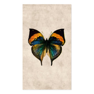Vintage Butterfly Illustration 1800's Butterflies Double-Sided Standard Business Cards (Pack Of 100)