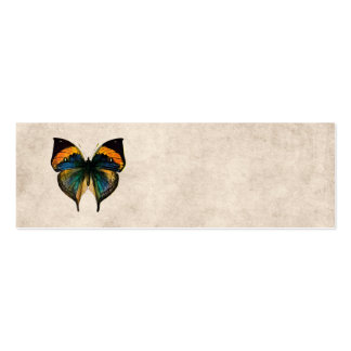 Vintage Butterfly Illustration 1800's Butterflies Double-Sided Mini Business Cards (Pack Of 20)