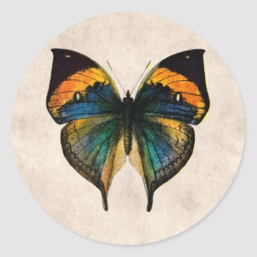 Vintage Butterfly Illustration 1800's Butterflies Round Sticker