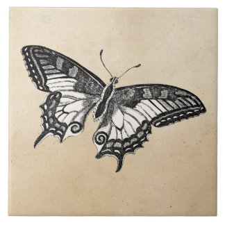 Vintage Butterfly Illustration 1800's Butterflies Tile