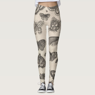Vintage Butterfly Moth Entomology Lepidoptera Leggings