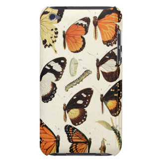 Vintage Butterfly Species Sheet Barely There iPod Case
