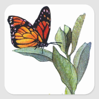 Vintage Butterfly Square Sticker