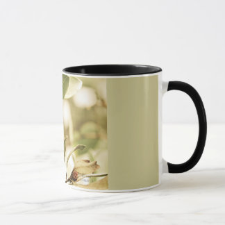 'Vintage Buttonwood' 11oz Mug lk