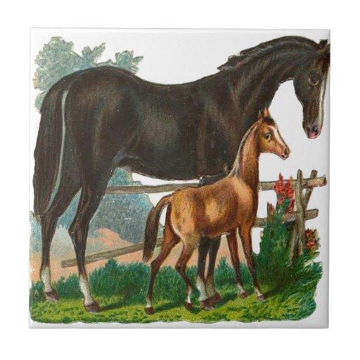 Vintage, caballo negro y pequeño caballo de Brown Tejas Cerámicas