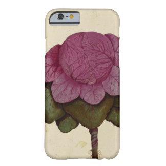 Vintage Cabbage Botanical Print iPhone 7 Cases