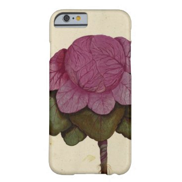 Vintage Cabbage Botanical Print iPhone 7 Cases
