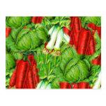Vintage Cabbage Carrots & Leek Collage Veg Design Post Cards