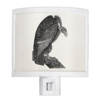 Vintage Californian Vulture Bird - Birds Template Night Light