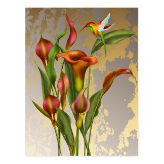 Vintage Calla Lilies and Hummingbird Postcard