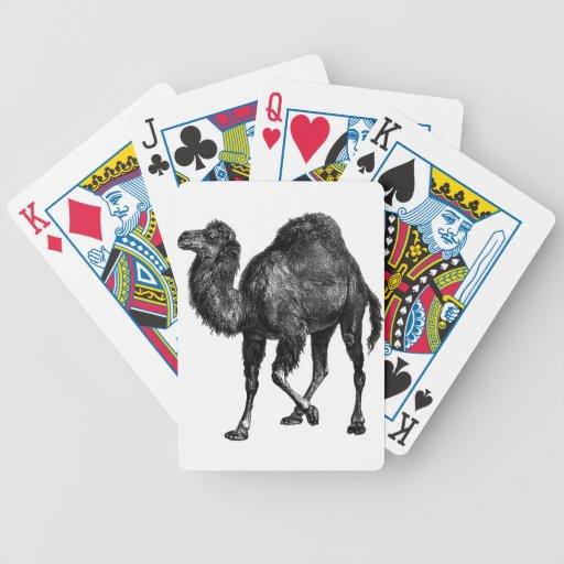 Poker camel