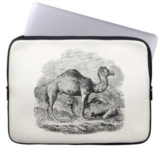 Vintage Camel Dromedary Personalized Illustration Computer Sleeve
