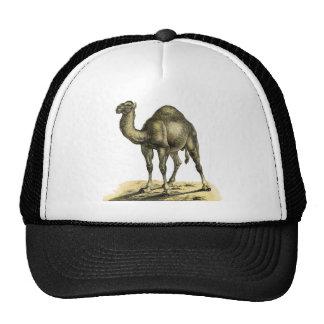 Vintage Camel Trucker Hat