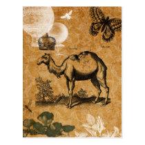 Vintage Camel Postcard