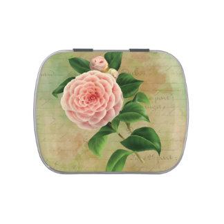 Vintage Camellia French Botanical Candy Tin