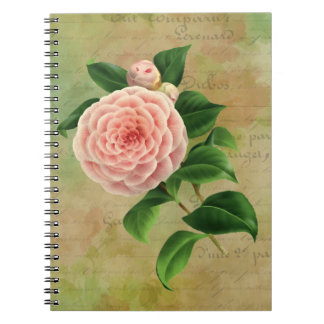 Vintage Camellia French Botanical Notebook