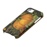 Vintage Can Label Art, Butterfly Pumpkin Vegetable iPhone 5 Cover