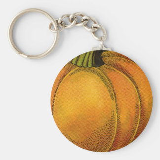 Vintage Can Label Art, Butterfly Pumpkin Vegetable Key Chains
