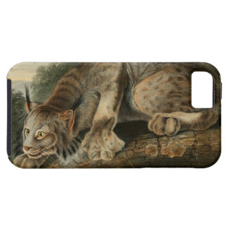 Vintage Canadian Lynx Illustration iPhone 5 Covers
