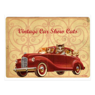 Vintage Car Automobile Cat Show Postcard