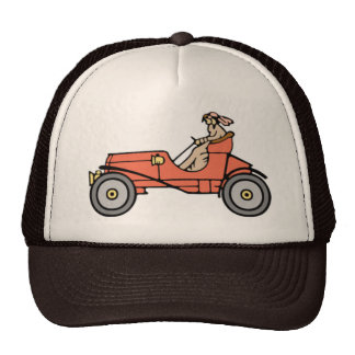 Vintage Car Brown Hat