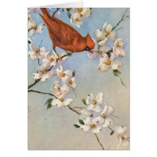 Vintage Cardinal Card