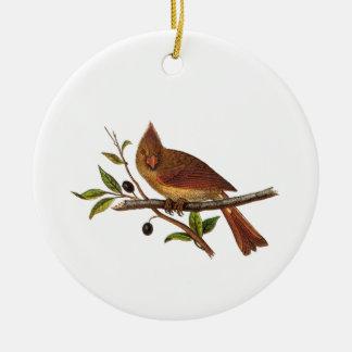 Vintage Cardinal Song Bird Illustration - 1800's Ceramic Ornament