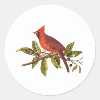 Vintage Cardinal Song Bird Illustration - 1800's Classic Round Sticker
