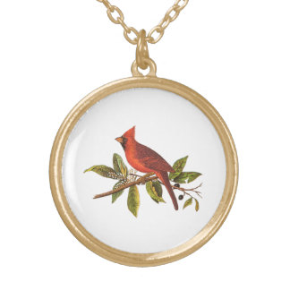 Vintage Cardinal Song Bird Illustration - 1800's Gold Plated Necklace
