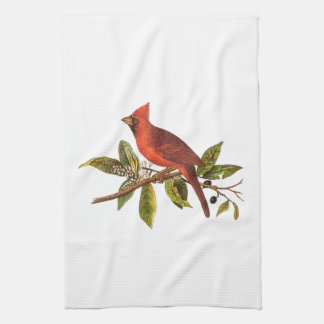 Vintage Cardinal Song Bird Illustration - 1800's Hand Towel