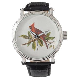 Vintage Cardinal Song Bird Illustration - 1800's Wrist Watch
