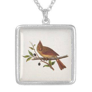 Vintage Cardinal Song Bird Illustration - Female Silver Plated Necklace