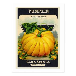 Vintage Card's Pumpkin Seed Package Postcard