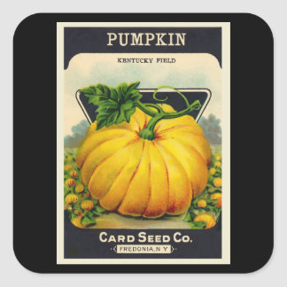Vintage Card's Pumpkin Seed Package Square Sticker