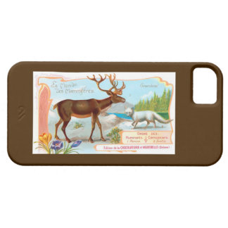 Vintage Caribou (Reindeer) and Arctic Fox iPhone SE/5/5s Case