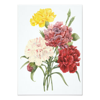 """Vintage Carnations Dianthus Garden Flowers Redoute 5"""" X 7"""" Invitation Card"""